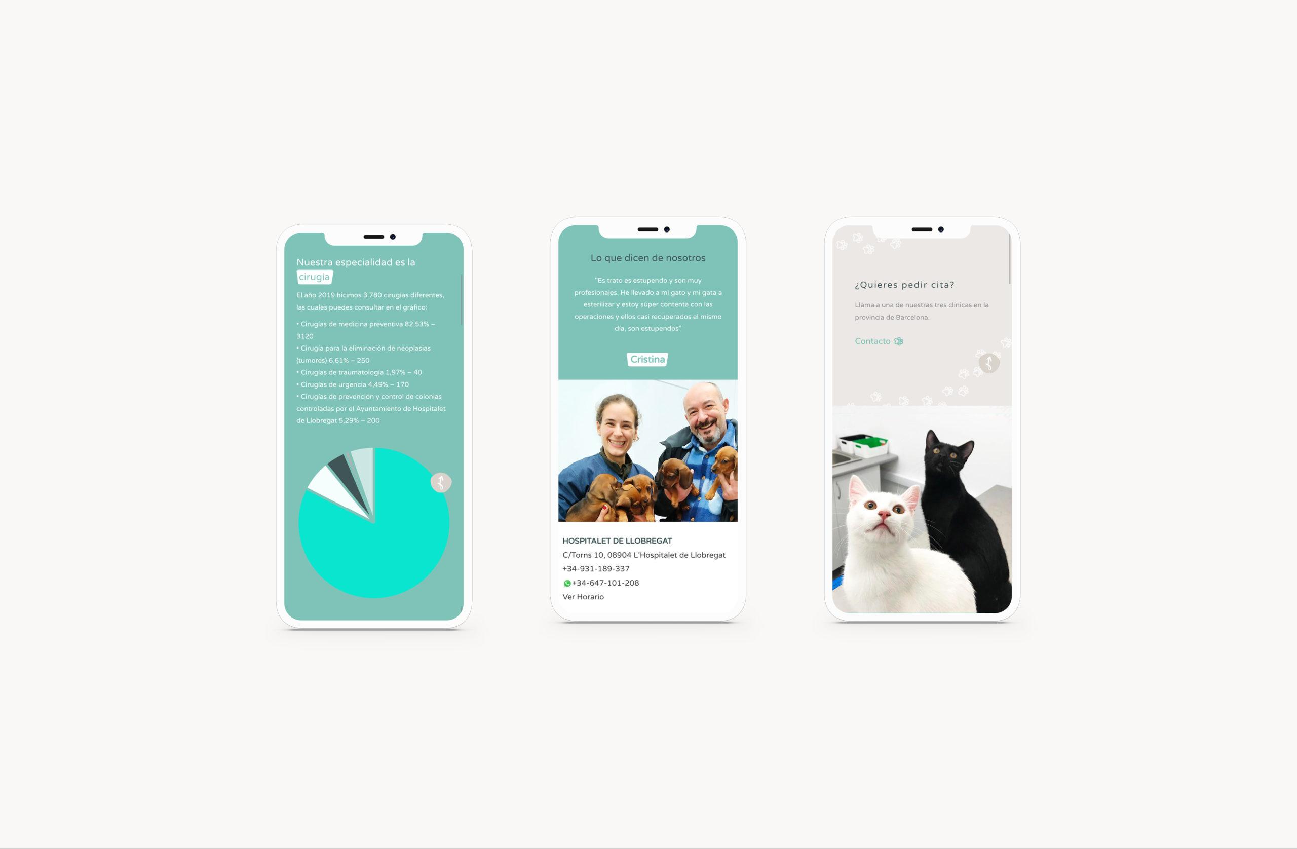 SolVet web design for iphone