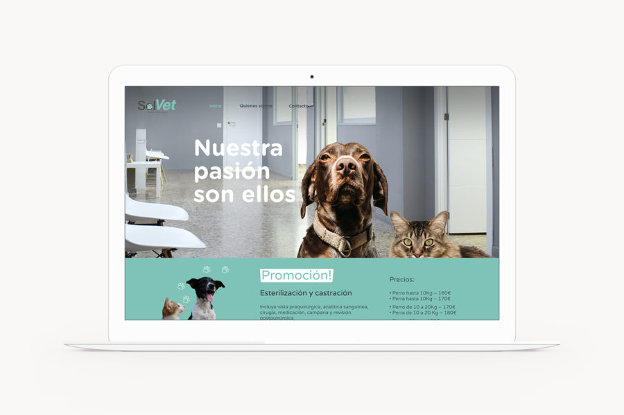 Desktop web design for veterinary centre