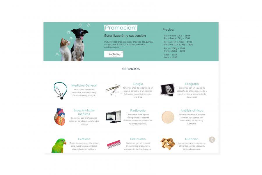 Solvet homepage