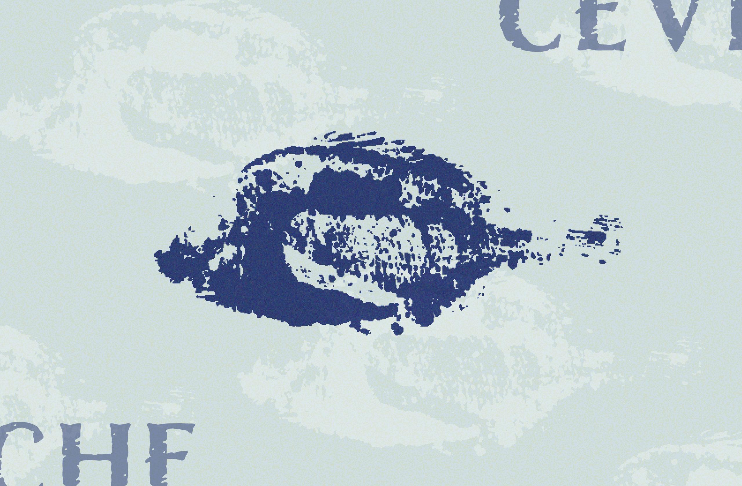 Cevicheria Illary restaurant logo design8